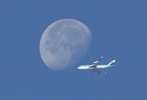 달고 비행기