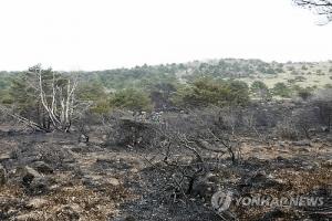 한라산 산불