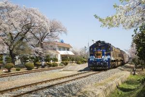 코레일 S-트레인(남도해양열차),