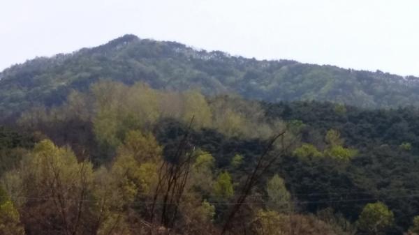 「레드 파인 650 안흥」 힐링센터가 있는 강원도 횡성군 안흥면 해발 540m 분지