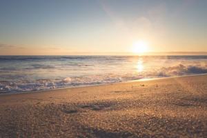 해변 이미지