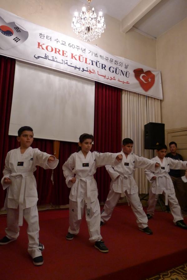시리아 아이들의 태권도 시범.