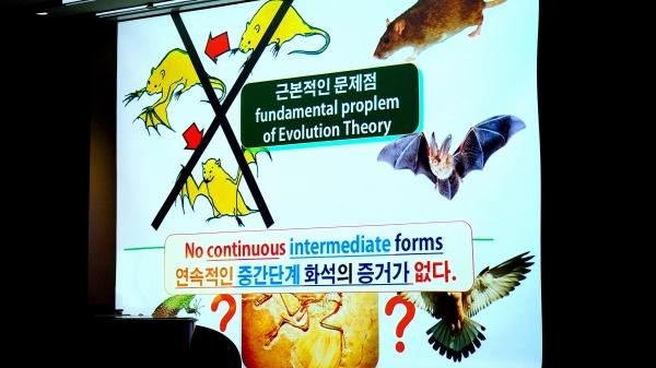 진화론의 결정적인 약점은 '연속적인 중간단계'가 존재하지 않는다는 사실이다. 사진에서 보듯 가령 들쥐가 박쥐로 진화하려면, 그 둘 사이 중간 단계 모습의 생물들이 존재해야 한다. 그러나 그런 것이 '없다'. 간혹 있다 해도 그것이 '연속적'이지 않다. 상식적으로 진화를 증거하려면, 연속적인 중간 단계의 생명체들이 존재했어야 하는데, 그렇지 않다는 것이다.