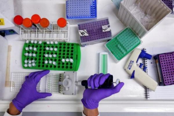영국의 과학자 획기적 발견 암세포