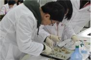 노로바이러스 등 수인성·식품매개질환 유행 원인균에 대한 안전교육인 '식품 중 노로바이러스 검사과정'과 '식중독 원인조사과정'