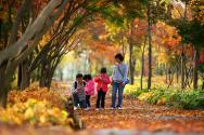 가을 단풍 나들이를 나온 가족