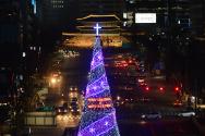 서울광장 크리스마스 트리