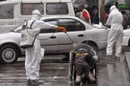 라이베리아에 만연한 에볼라 바이러스