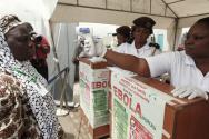 나이지리아 에볼라