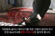 공영방송 KBS 할랄 미화 반대 동영상