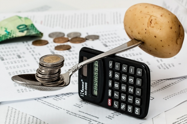 재정 회계 행정 청지기
