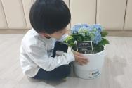 초록우산어린이재단 봄맞이 화분
