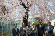 발전기금 전달식 참가자들이 벚꽃이 활짝 핀 서울캠퍼스를 둘러보고 기념사진을 촬영하고 있다.