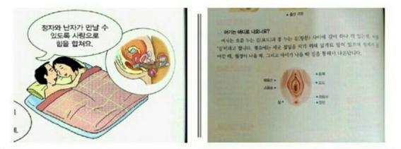 성교육 교과서