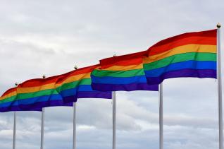무지개 동성애