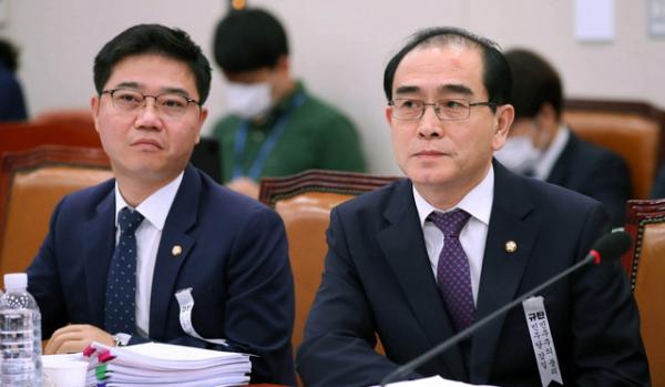 국회 외교통일위원회가 3일 오후 2시부터 열린 가운데, 지성호·태영호 의원(미래통합당, 왼쪽부터)이 참여했다.