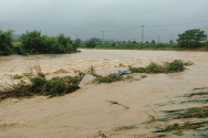 호우경보가 4일 발효된 강원 양구군 해안면 후리의 한 하천이 호우로 물이 불어나 있다.
