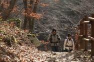 KBS 영상앨범 산