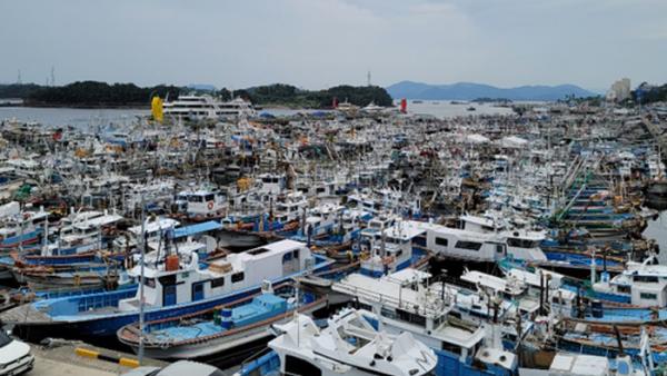 어업 인구