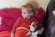 강아지를 안고 TV보는 소녀