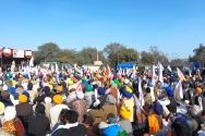 델리에서 농부들이 두 달째 모디 정부에 대한 시위를 이어가고 있다.
