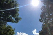 햇빛 폭염