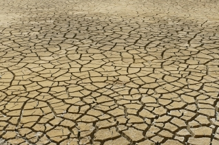 가뭄 건조
