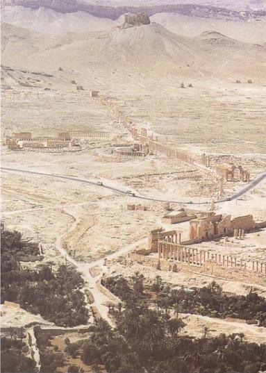 시리아 팔미라 유적