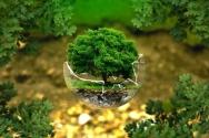 환경보호 지구