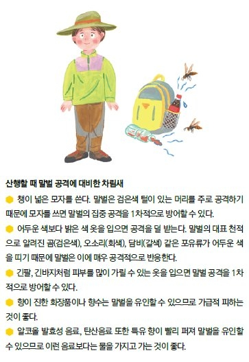 벌 쏘임 예방 및 대처요령