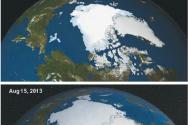 북극빙하 증가